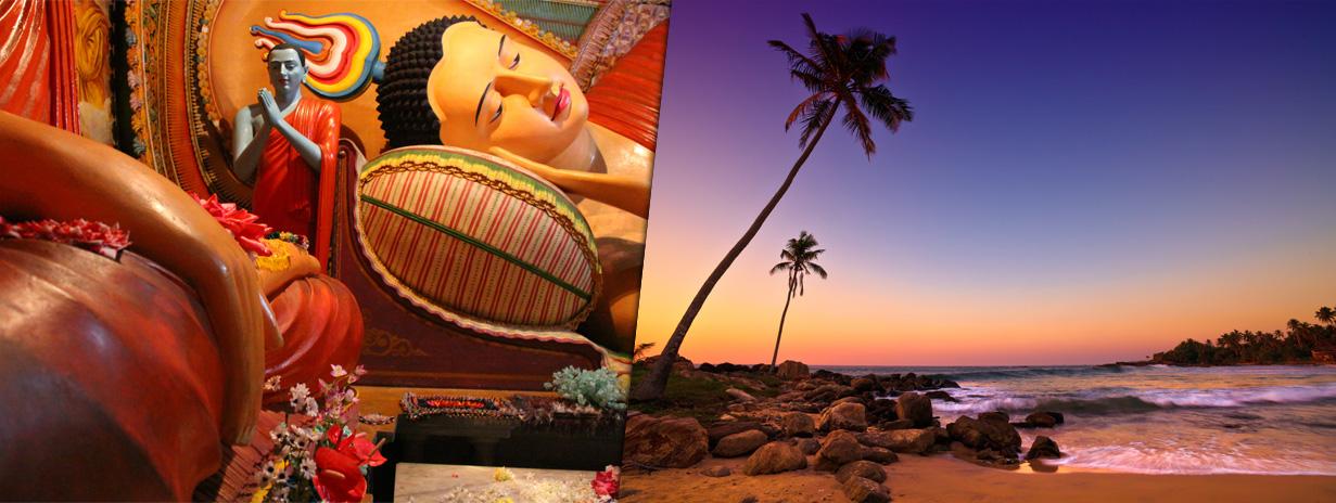Zájezd Srí Lanka - zájezd od specialistů